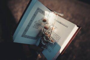 Как писать книги в жанре нон-фикшн, жанр нон-фикшн